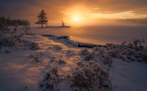 Picture winter, snow, trees, sunset, traces, Norway, the bushes, Norway, RINGERIKE, Ringerike, frozen lake
