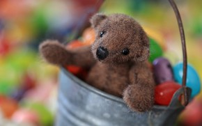 Picture look, childhood, background, toy, legs, bear, muzzle, candy, bear, bucket, sweets, bear, plush, items, Teddy, …