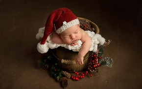 Picture berries, background, Christmas, bucket, New year, bumps, child, cap, baby