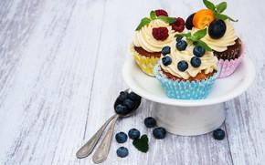 Picture berries, blueberries, plate, cream, cupcakes, Olena Rudo
