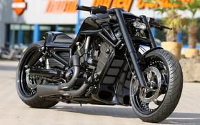 Picture Custom, Motorbike, Thunderbike