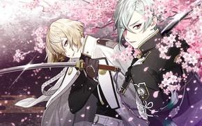 Picture Sakura, guys, katana, samurai, nitroplus, touken ranbu, Dance of swords, higekiri