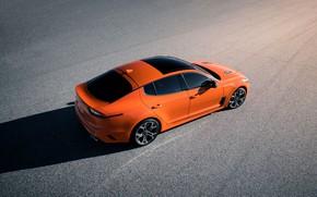 Picture orange, shadow, KIA, Kia, GTS, the five-door, Stinger, 2020, fastback, KIΛ
