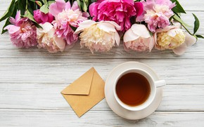 Picture flowers, pink, wood, pink, flowers, cup, peonies, tea, peonies, Cup of tea