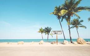 Picture palm trees, paradise, shore, palms, beach, sand, sea, wave, summer, tropical, summer, beach, sea, sand, …