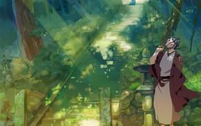 Picture nature, guy, Natsume Yuujinchou, Book of friendship Natsume