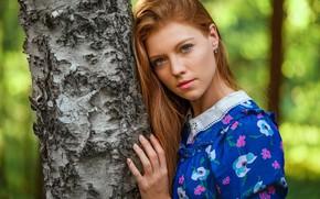 Picture look, pose, model, portrait, makeup, hairstyle, beauty, is, redhead, bokeh, the tree, Saul Ke