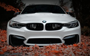 Picture BMW, Front, White, Autumn, Face, F80, Sight, Aggressive