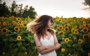 Picture the sky, sunflowers, pose, hair, Clouds, Girl, Anna Kovaleva