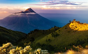 Picture the sky, grass, the sun, clouds, trees, flowers, mountains, smoke, the volcano, Indonesia, the bushes, …
