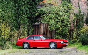 Picture Red, Sports car, Classic car, Jaguar XJR-S