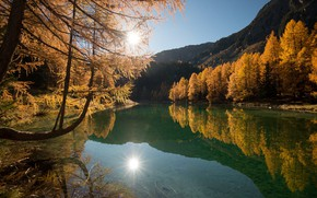 Picture autumn, forest, landscape, nature, lake, clear water, beauty