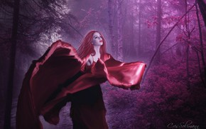Picture forest, girl, nature, photoshop, photoart