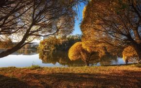 Picture autumn, landscape, nature, Park, river, dam