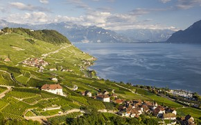 Picture lake, home, Switzerland, Alps, the vineyards, Canton, Laveau