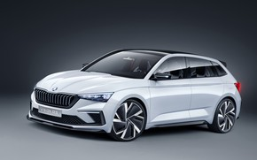 Picture 2018, Skoda, Vision RS