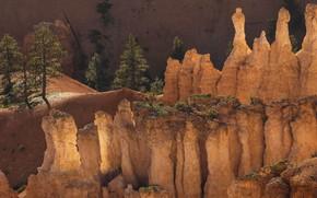 Picture USA, Utah, Bryce Canyon