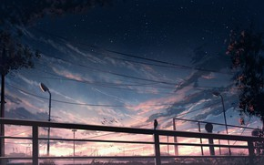 Picture night, dawn, posts, wire, lights