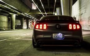 Picture Mustang, Ford, Ford Mustang, Ford Mustang