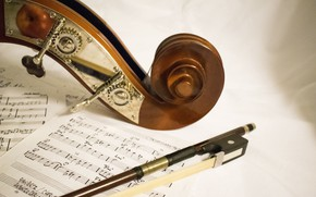Picture MACRO, NOTES, PICK, VIOLIN, BOW