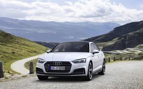Picture road, Audi, Audi A5, 2019, S5 Sportback