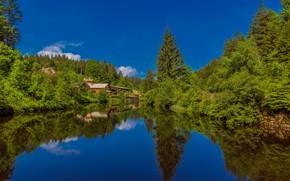 Wallpaper forest, lake, The black forest, Black Forest, home, Germany, Baden-Württemberg, Germany, reflection, Baden-Württemberg, The black ...