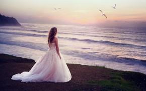Picture wave, girl, seagulls, dress, breeze, curls
