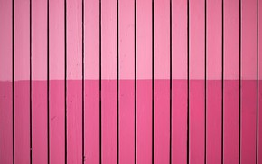 Picture pink, Board, the fence