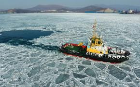 Picture ice, sea, shore, tug, winter