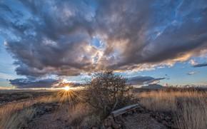 Picture the sun, trees, sunset, hills, USA, Arizona, Prescott, viceo