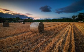 Picture field, autumn, hay, bales, the end of summer, bales
