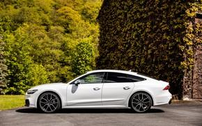 Picture Audi, profile, side view, Audi A7, 2019, S7 Sportback