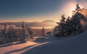 Picture winter, snow, trees, landscape, mountains, nature, morning, shadows