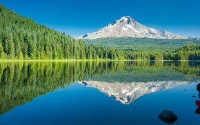 Picture forest, the sky, trees, mountains, lake, reflection