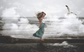 Picture sea, girl, bird, shore
