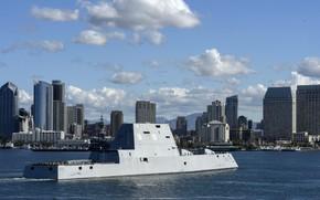 Picture ship, USS Michael Monsoor, Zumwalt-class