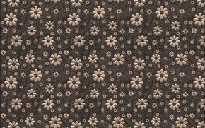 Picture flowers, background, texture, brown, design, art, pattern, floral, backgroun