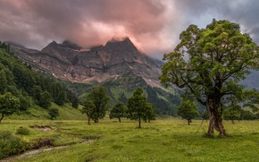 Picture greens, field, forest, summer, clouds, trees, mountains, overcast, the slopes, tops, meadow, haze, the foothills