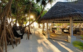 Picture palm trees, The Maldives, resort, Bungalow, Lounge, Kanuhura, area, reception, Fendaa