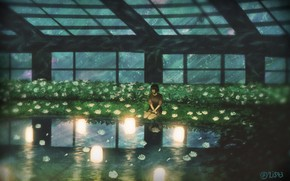 Picture the sky, girl, night, lights, pond, greenhouse