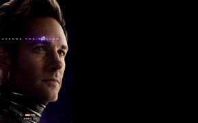 Picture Ant - man, Avengers: Endgame, Avengers Finale, Terpily Thanos, Micro-man