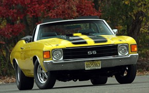 Picture Chevrolet, Muscle, Chevelle, Vehicle, Chevelle SS