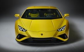 Picture Lamborghini, front view, Huracan, 2020, RWD, Huracan Evo
