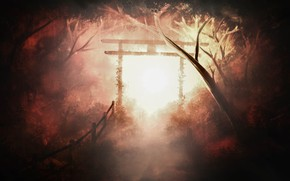 Picture road, forest, torii