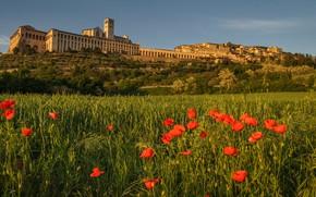 Picture Maki, mountain, Italy, Umbria, Assisi