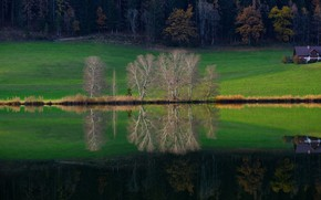 Picture greens, autumn, forest, grass, trees, branches, green, lake, house, reflection, hills, shore, meadow, house, pond, …