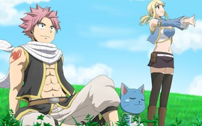 Picture grass, romance, The sky, anime, meadow, art, pair, two, Fairy Tail, Natsu, Lucy, Fairy tail