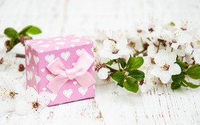 Picture gift, branch, tape, white, flowers, Olena Rudo