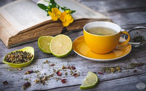 Picture tea, Cup, book, lime