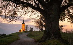 Picture road, landscape, nature, tree, morning, backlight, Church, meadows, Slovenia, Yamnik
